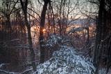 Snowy Sunrise-Montgomery County