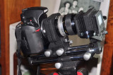 D700, 55mm Micro Nikkor, PB-4 bellows and PS-4 slide/film copier