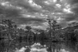Storm building over bayou
