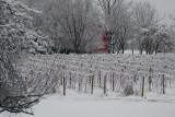 Winter In Hometown USA