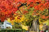 2011 Autumn Colors