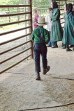 amish_auction_2012