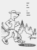 1982 - STRAY DOG STORY