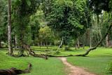 Khao Phanom Bencha National Park