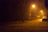 Snow falling 2011 Nov 9
