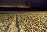 Snow on the ground 2011 Nov 10 1:30 am