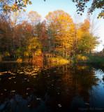 fall_2011