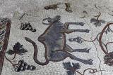 Découverte de la Jordanie - Le mont Nébo, le château croisé de Kerak et Madaba