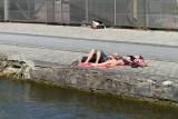 23 Canal de l Ourcq et bassin de la Villette - IMG_3890_DxO Pbase.jpg