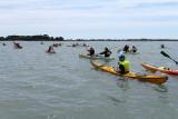30 Kayak Golfe 2011 - IM5A6B~1 web2.jpg