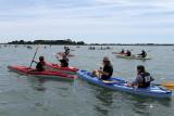 33 Kayak Golfe 2011 - IM4379~1 web2.jpg