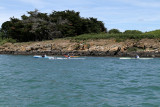 59 Kayak Golfe 2011 - IM091F~1 web2.jpg