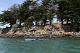60 Kayak Golfe 2011 - IM68B3~1 web2.jpg