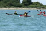 129 Kayak Golfe 2011 - MKB037~1 web2.jpg