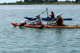 151 Kayak Golfe 2011 - MKB573~1 web2.jpg
