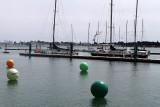 343 Volvo Ocean Race - Groupama 4 baptism - bapteme du Groupama 4 IMG_5294_DxO WEB.jpg