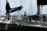 470 Volvo Ocean Race - Groupama 4 baptism - bapteme du Groupama 4 IMG_5388_DxO WEB.jpg