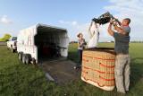 2219 Lorraine Mondial Air Ballons 2011 - IMG_9331_DxO Pbase.jpg