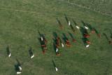 2280 Lorraine Mondial Air Ballons 2011 - MK3_3185_DxO Pbase.jpg