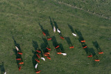 2283 Lorraine Mondial Air Ballons 2011 - MK3_3188_DxO Pbase.jpg