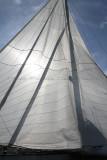333 Multi50 Trophee du Port de Fecamp 2011 - IMG_1505_DxO Pbase.jpg