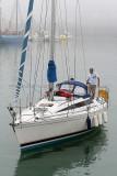 346 Multi50 Trophee du Port de Fecamp 2011 - MK3_4207_DxO Pbase.jpg