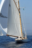 459 Voiles de Saint-Tropez 2011 - MK3_5563_DxO Pbase.jpg