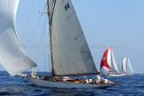 465 Voiles de Saint-Tropez 2011 - MK3_5570_DxO Pbase.jpg