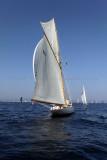 490 Voiles de Saint-Tropez 2011 - IMG_2635_DxO Pbase.jpg