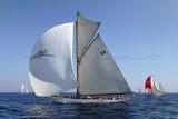 500 Voiles de Saint-Tropez 2011 - IMG_2640_DxO Pbase.jpg