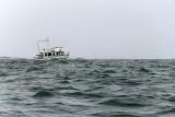 21 - The 2011-2012 Volvo Ocean Race at Lorient - MK3_8854_DxO Pbase.jpg