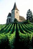 10 Hunawihr l'église fortifiée au milieu des les vignes