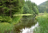 34 Tourbière du lac de Lispach