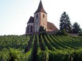 188 Hunawihr l'église fortifiée au milieu des les vignes.jpg