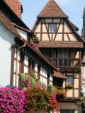 195 Visite de la ville d'Obernai