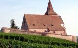 314 Unawihr - l'église fortifiée depuis les vignes