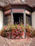 318 Unawihr fenêtre décorée