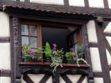 392 Riquewihr-  fenêtre décorée
