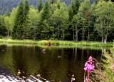434 Tourbière flottante du lac de Lispach