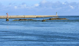 Port du Croisic - MK3_4443_DXO.jpg