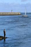 Port du Croisic - MK3_4459_DXO.jpg