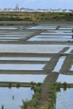 Marais salants de la presqu'île Guérandaise - MK3_4473_DXO.jpg