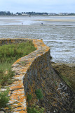 Marais salants de la presqu'île Guérandaise - MK3_4479_DXO.jpg