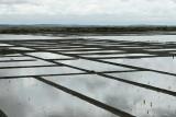 Marais salants de la presqu'île Guérandaise - IMG_0247_DXO.jpg