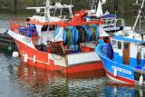 Port de la Turballe - MK3_4490_DXO.jpg