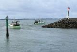 Port de la Turballe - MK3_4501_DXO.jpg
