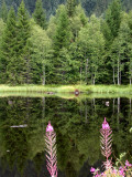 455 Lac de Lispach