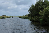 Balade en barque dans la Grande Brière, près de St-André-des-Eaux - MK3_4607_DXO.jpg