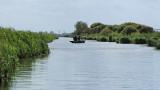 Balade en barque dans la Grande Brière, près de St-André-des-Eaux - MK3_4614_DXO.jpg