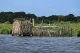 Balade en barque dans la Grande Brière, près de St-André-des-Eaux - MK3_4641_DXO.jpg